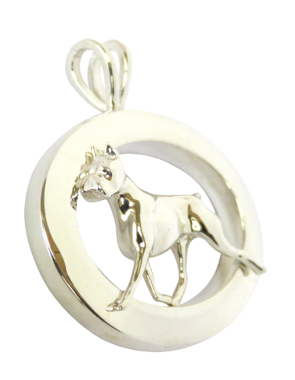 14K Gold or Sterling Silver Boxer in Glossy Narrow Oval - Front View