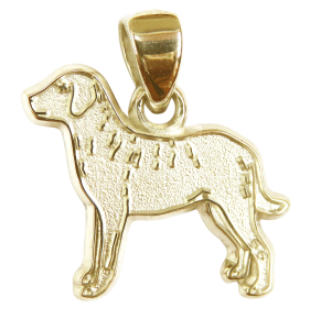 Chesapeake Bay Retriever Charm or Pendant in Sterling or 14K Gold