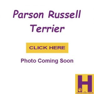 Parson Russell Terrier Jewelry Gifts in Sterling Silver and 14K Gold