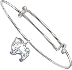 Sterling Silver Keeshond Charm on Bangle Bracelet